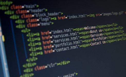 Wordpress Theme vs Custom Development